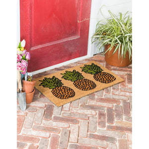Pineapple Trio Rubber Inset Coir Mat
