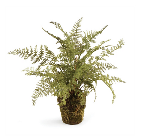 "13"" SOFT FERN DROP-IN"