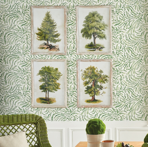 TREE STUDY, SET OF 4