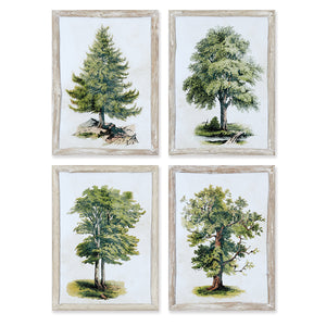 WILDFLOWER STUDY, SET OF 6