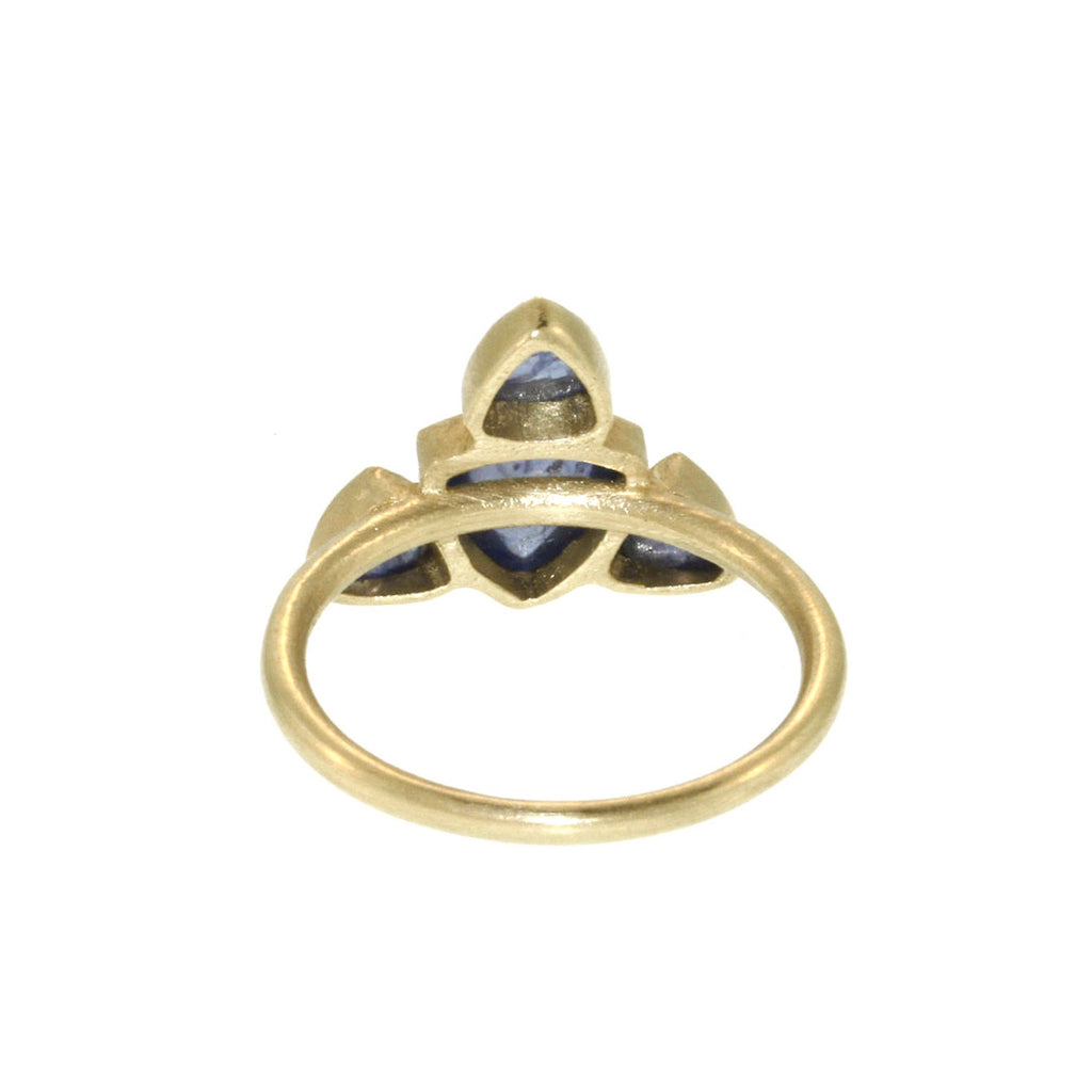 Sapphire + 18K Gold Cosmic Ring