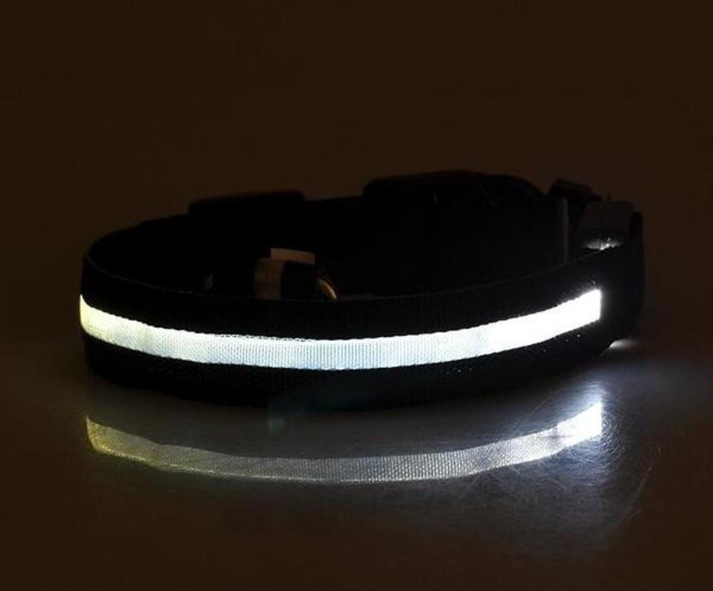 1. LED Safety Dog Collar