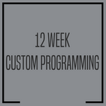 12 WEEK CUSTOM PROGRAMMING