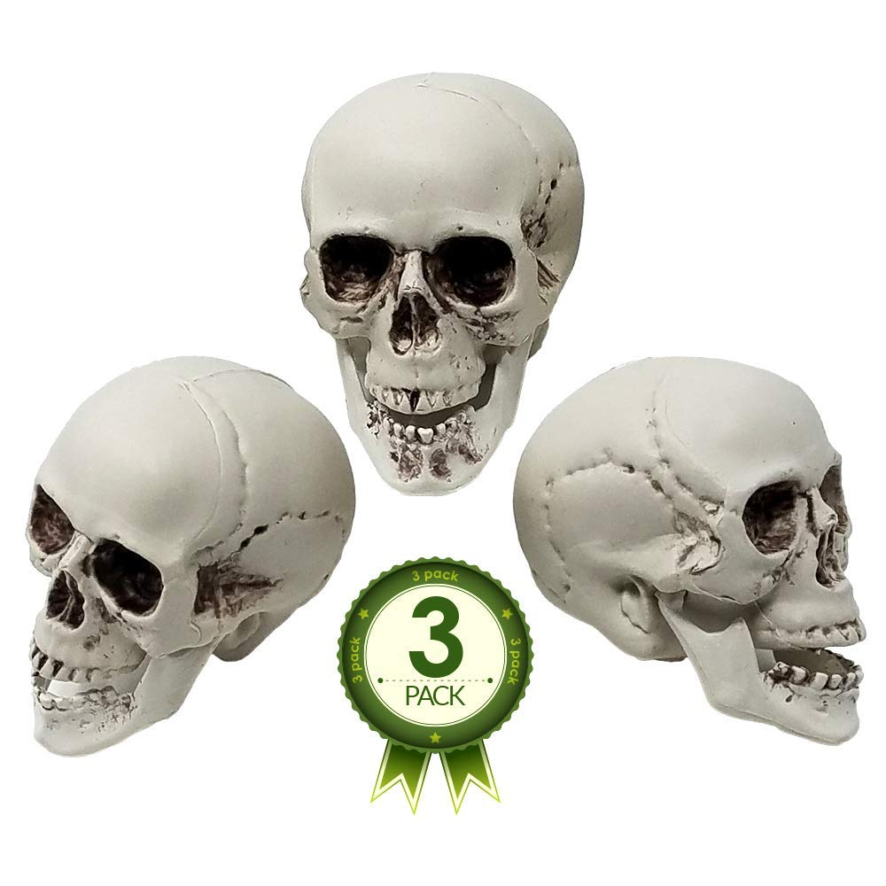 Plastic Skulls - Bag of 3