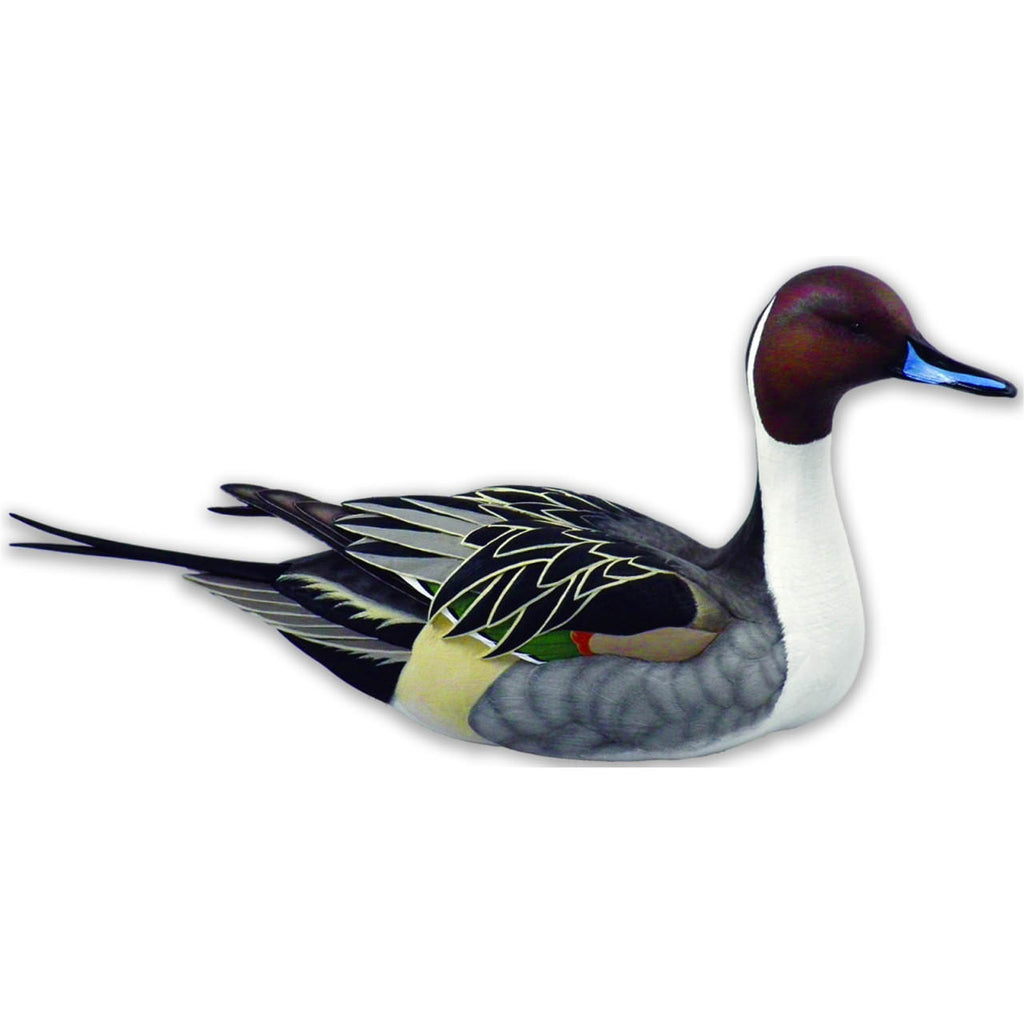 Life-Size Swan Lake Pintail Waterfowl Sculpture