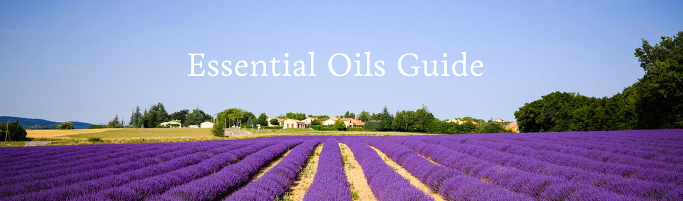 21 drops Essential Oil Guide