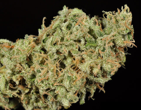 Durban Poison Top 5 Landrace Cannabis Strains