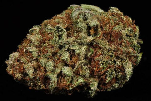 Hindu Kush Top 5 Landrace Cannabis Strains