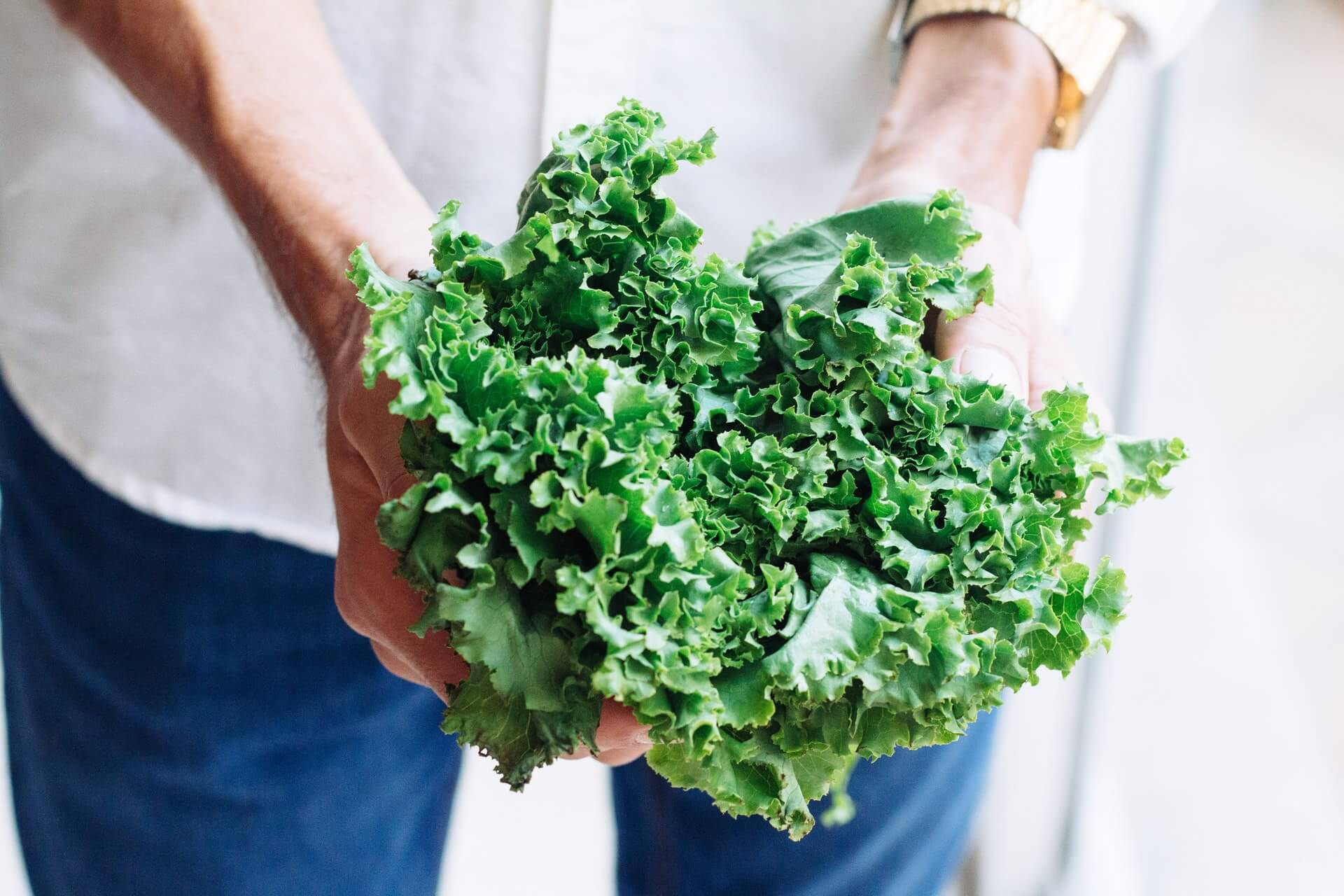 person wearing white top blue jeans holding leafy greens