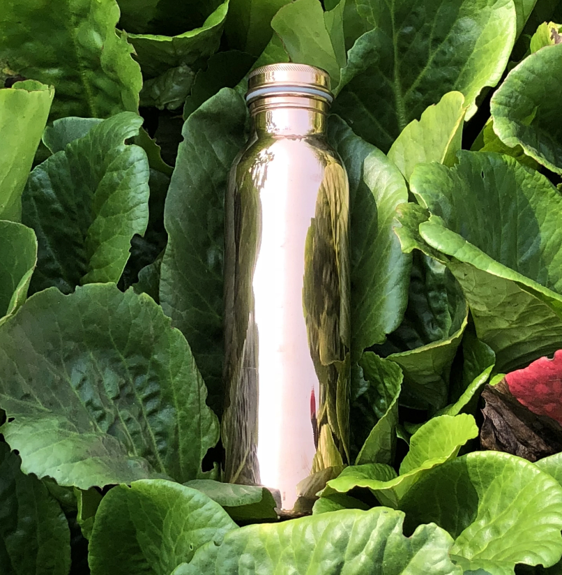 Copper H2O smooth water bottle placed on large leaf plants