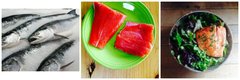 whole raw and cooked sockeye salmon collage