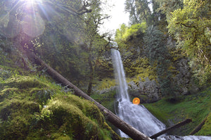 Beautiful Waterfall Hike to Pup Creek Falls
