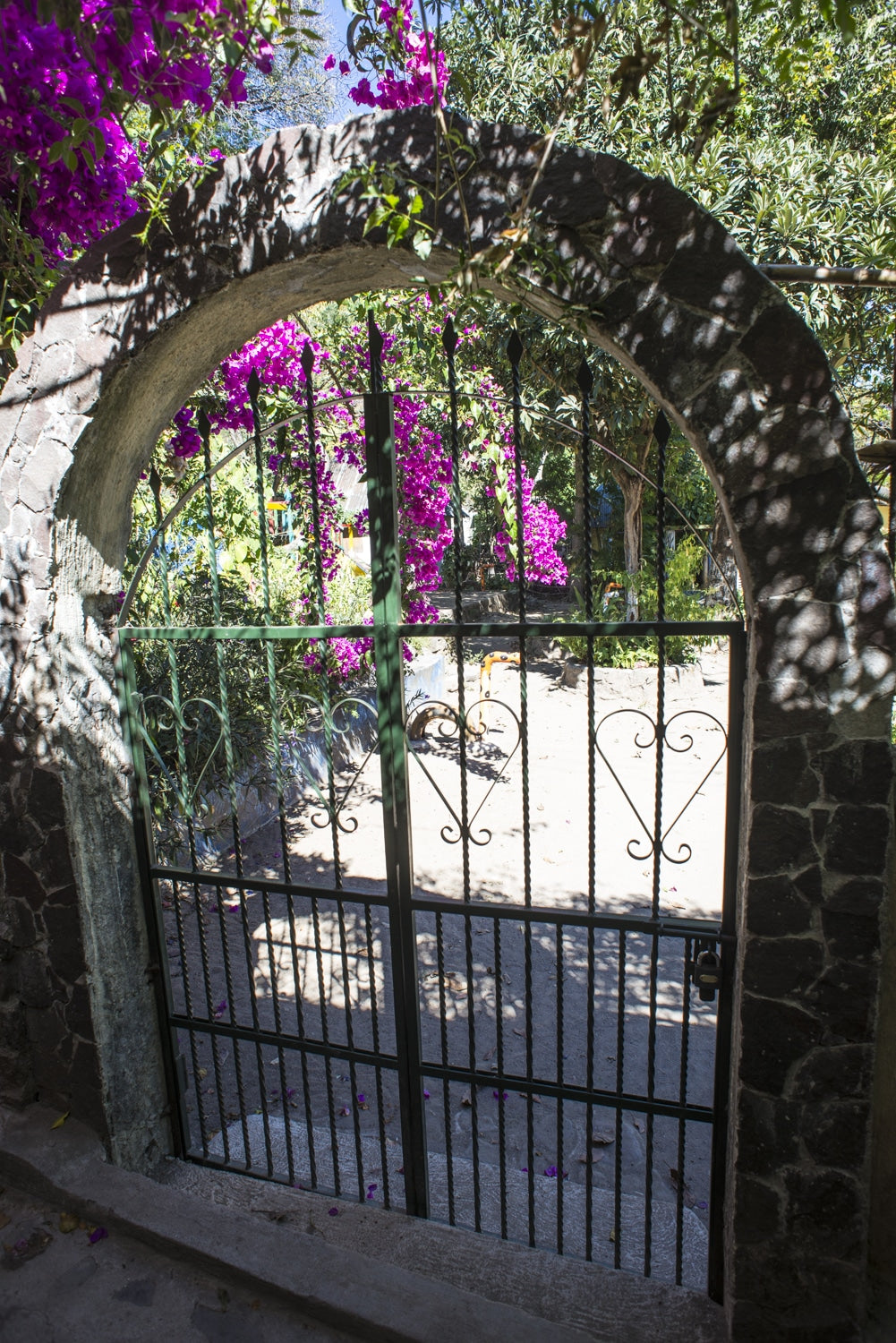 wrought iron gate with vines and pink flowers