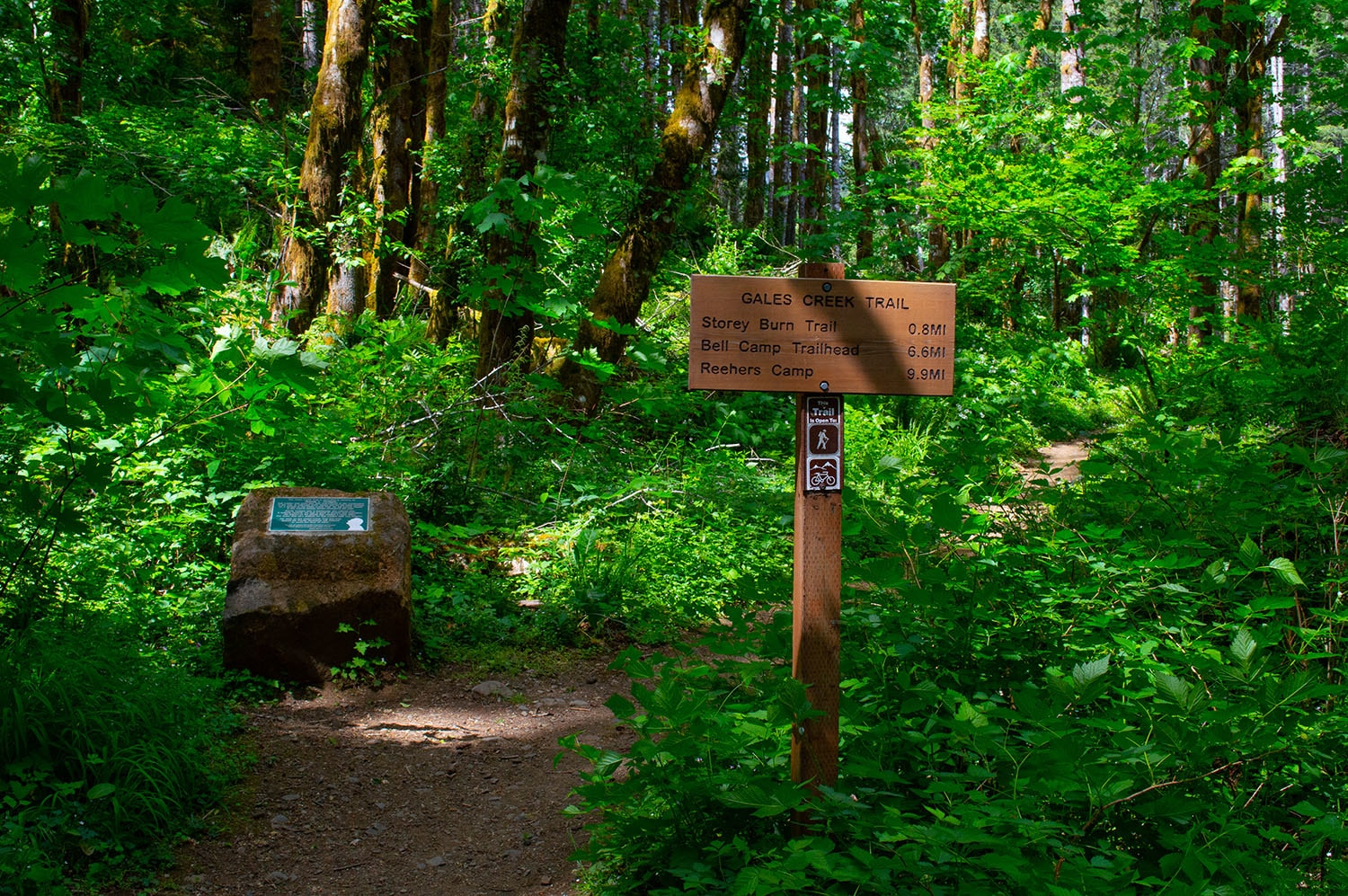 Gales Creek Trailhead