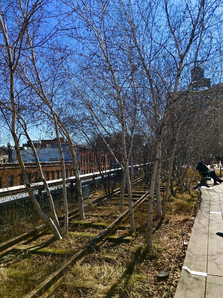 new york highline walk