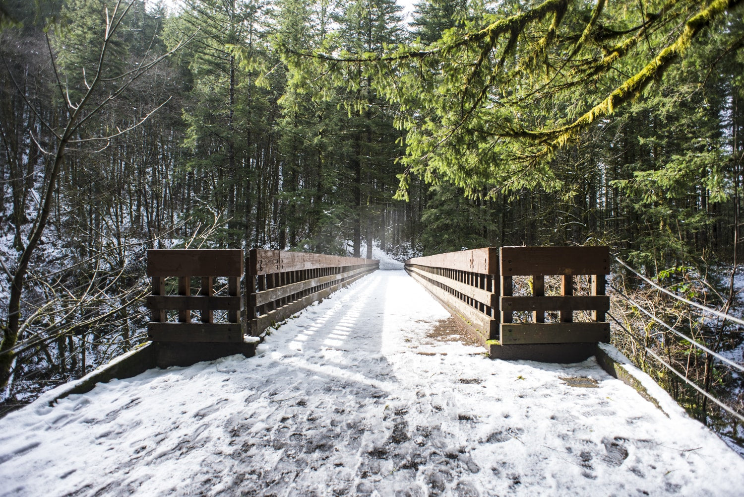 footbridges in the pacific northwest