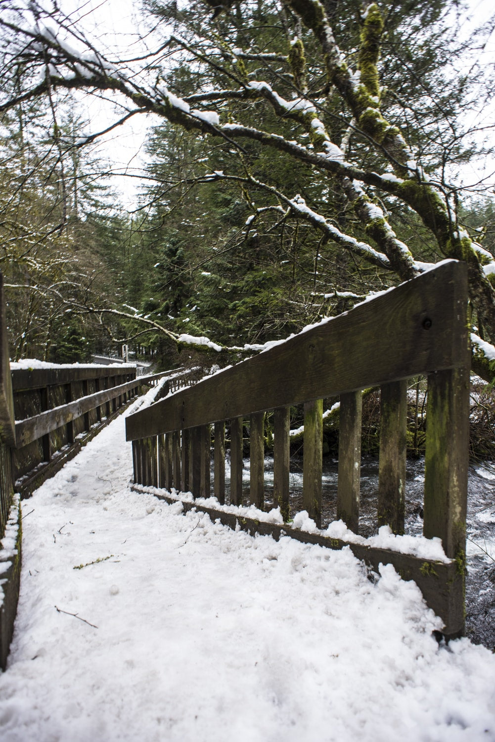 foot bridge at the trailhead of moulton falls
