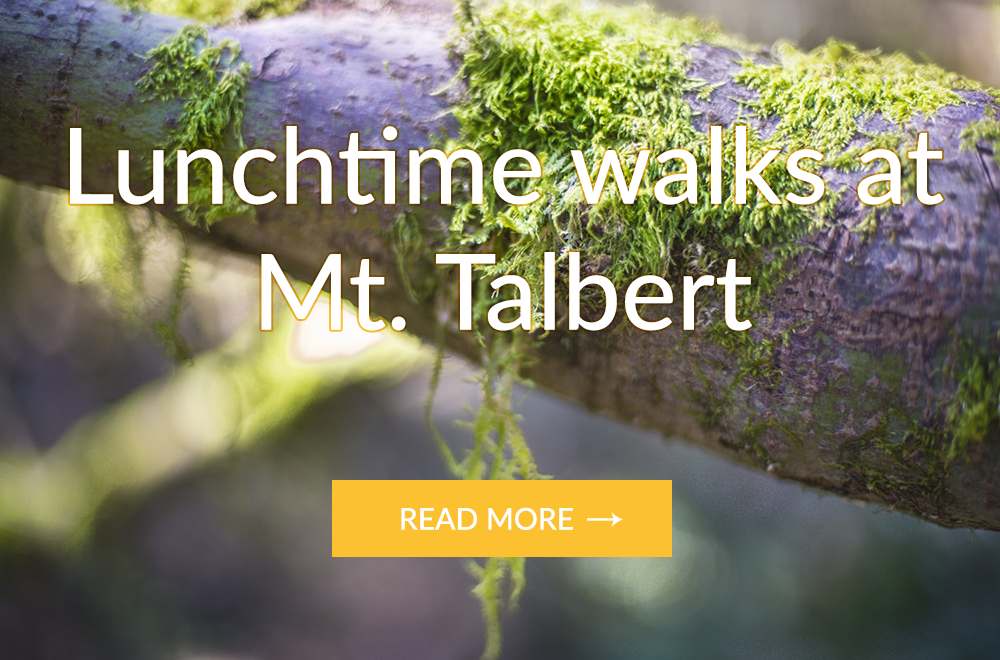 Lunchtime walks at Mt. Talbert in Happy Valley Oregon