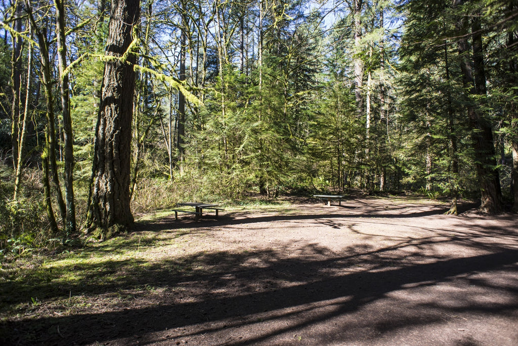picnic tables at lacamas creek trail