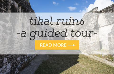 a guided tour of tikal mayan ruins