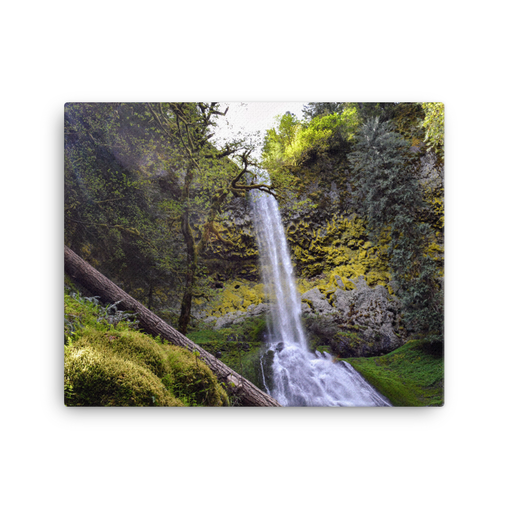 Pup Creek Falls - Gallery Canvas