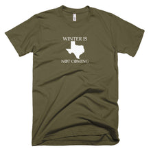 Load image into Gallery viewer, texas t shirt, texas shirt, winter is not coming, game of thrones t shirt,