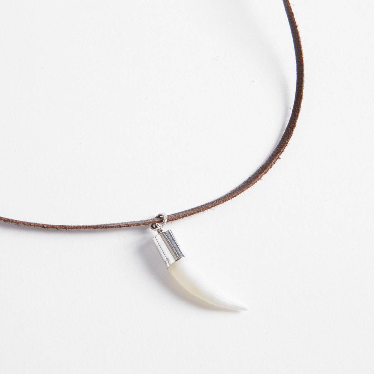 b58b477c106 Crocodile Tooth Necklace | Croc Stock and Barra