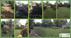How We Lay Your Turf @ Green Life Turf - Beecroft June 2016