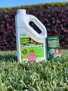 Winter Lawn Care Products