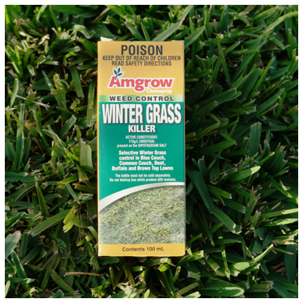 Amgrow Chemspray Weed Control Winter Grass Killer 100ml on Sir Walter DNA Certified Grass