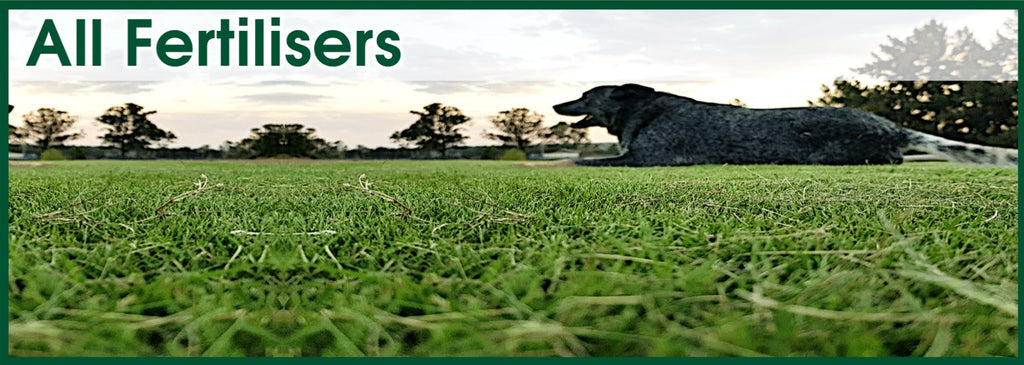 All Fertilisers - Lawn & Turf Care Products