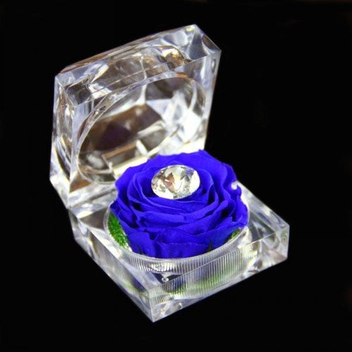 Rose in a crystal box