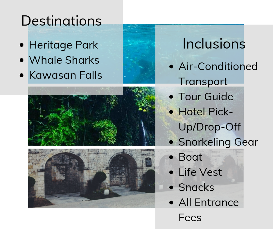 Whale watching tour with Kawasan falls tourist spots