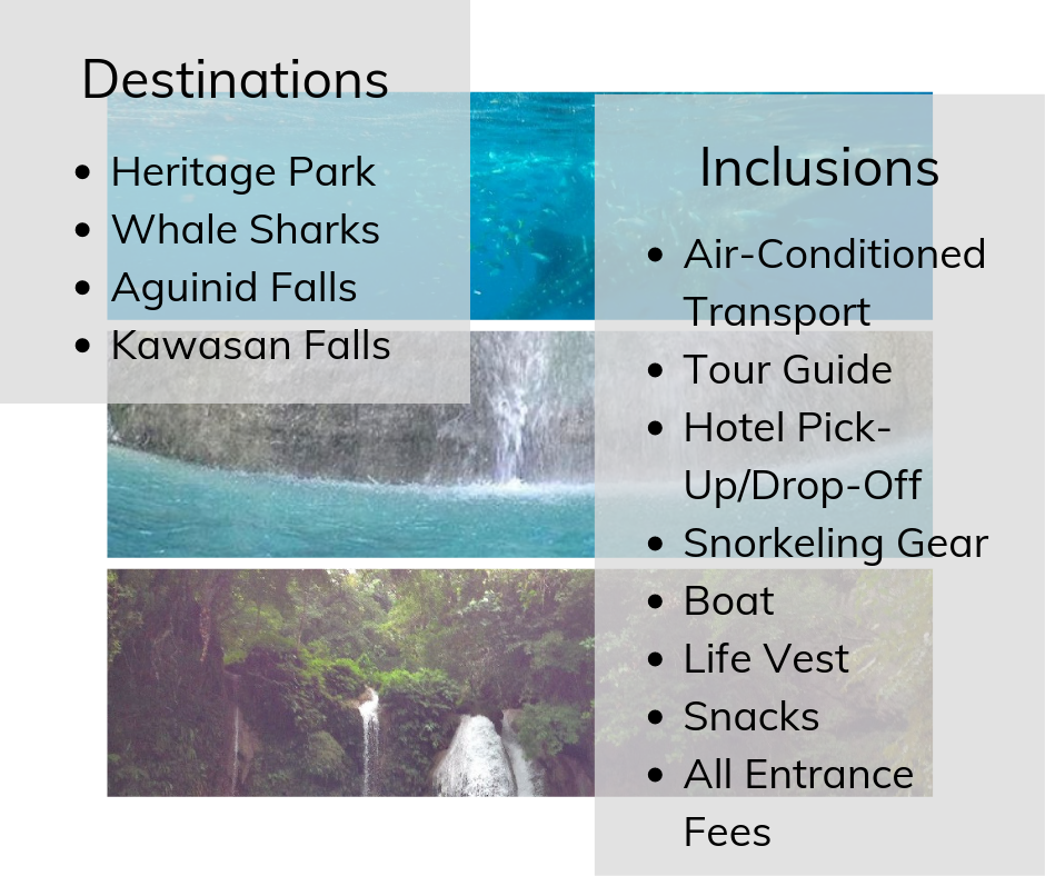 Whale Watching with aguinid and kawasan falls tour inclusions