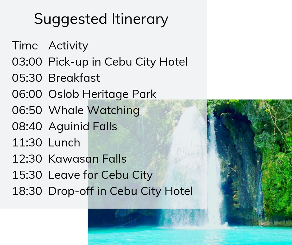 Whale watching with Aguinid and Kawasan Falls itinerary