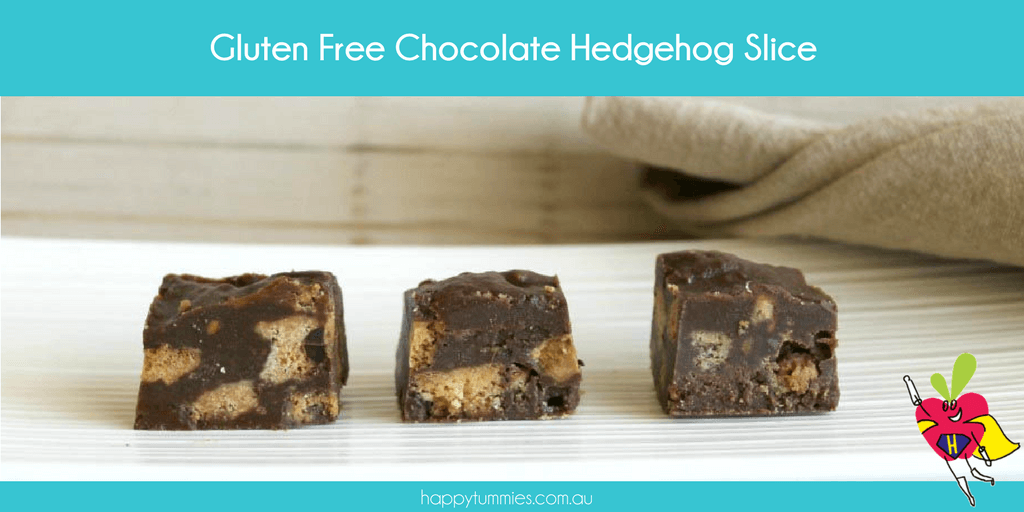 Gluten Free Chocolate Hedgehog Slice - Happy Tummies