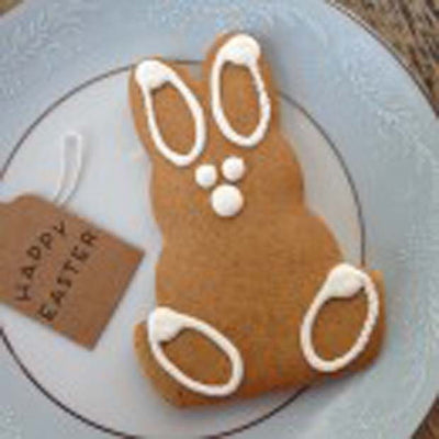 Gingerbread Folk Gluten Free Gingerbread Bunny 30g - Happy Tummies