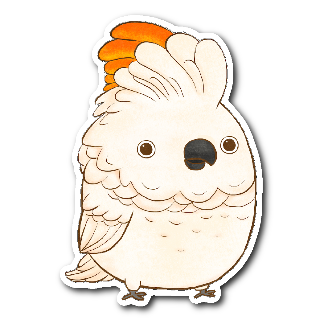 Moluccan Cockatoo Sticker
