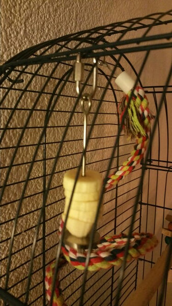 Bird cage with fruit skewers