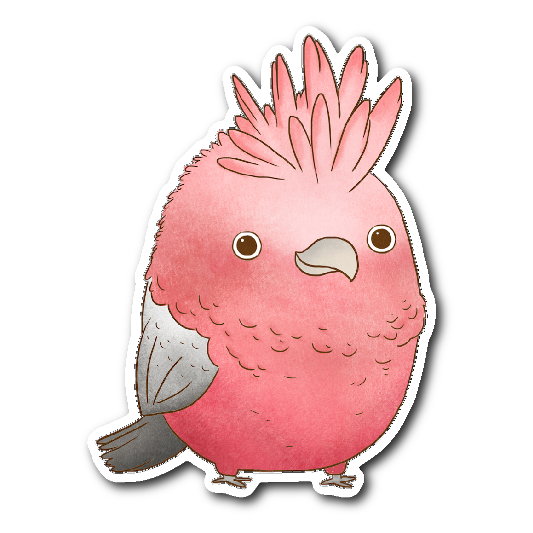 Galah Cockatoo Sticker
