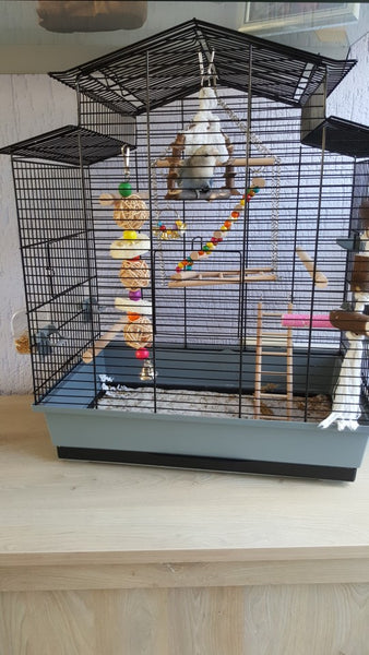Distant view of bird cage with sponge toy