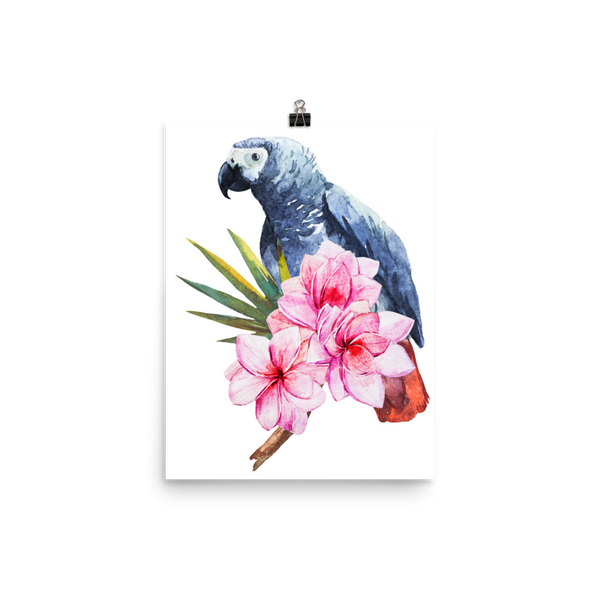 African Grey Floral Poster