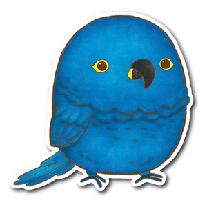 Hyacinth Macaw Sticker