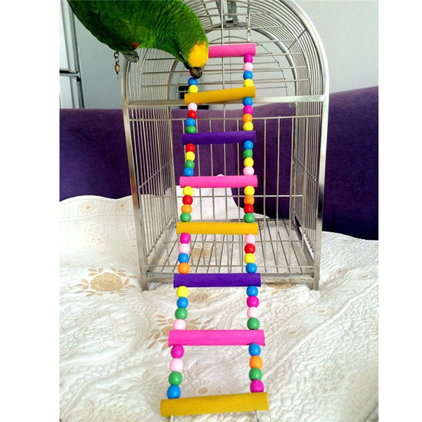 Rainbow colored ladder for birds