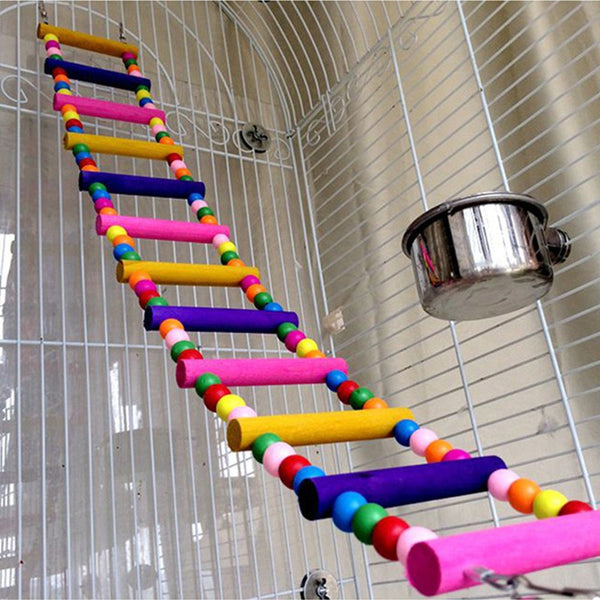 Rainbow colored toy ladder