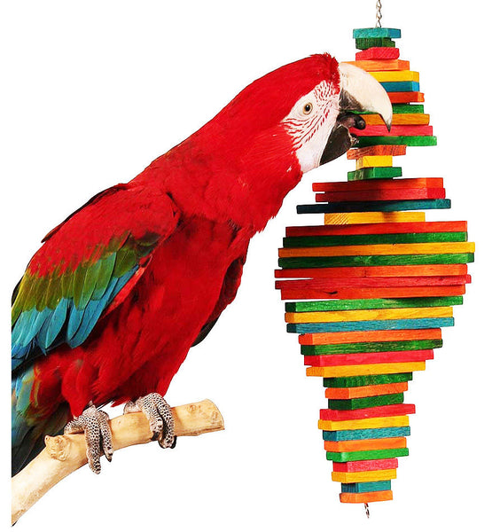 Macaw playing with wooden toy