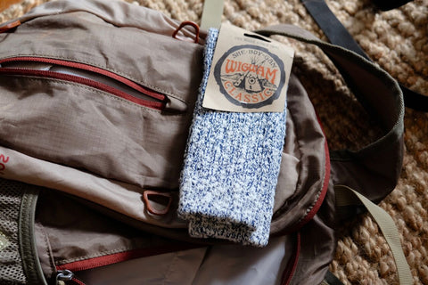 a pair of Wigwam Cypress socks in white/navy