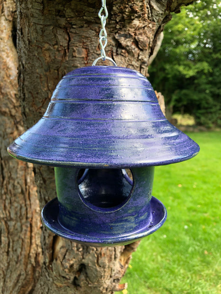 Purple Clarence bird feeder 3