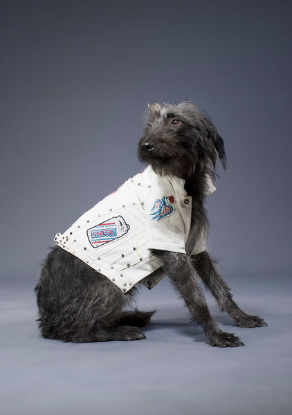 Sniffie Dog Fashion Denim Jacket with Badges