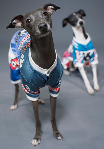 Sniffie Dog Fashion Printed Sportswear with Crystals